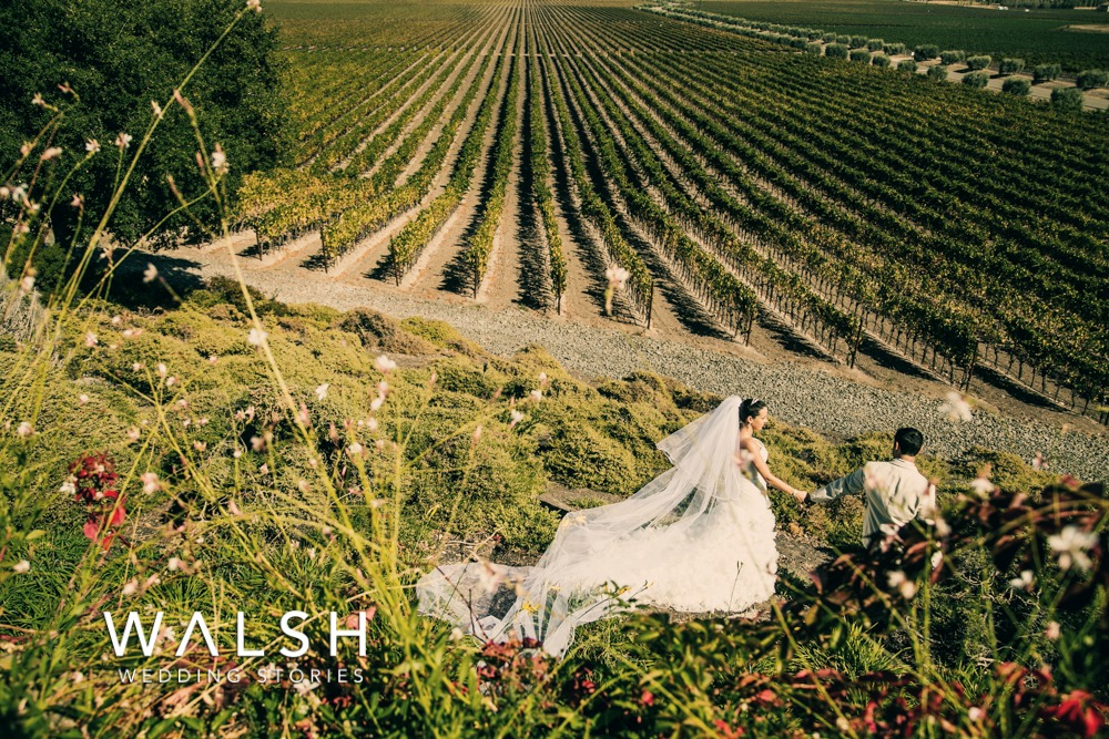 Napa Valley vineyards wedding photographers